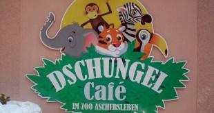 Logo vom Dschungel Café